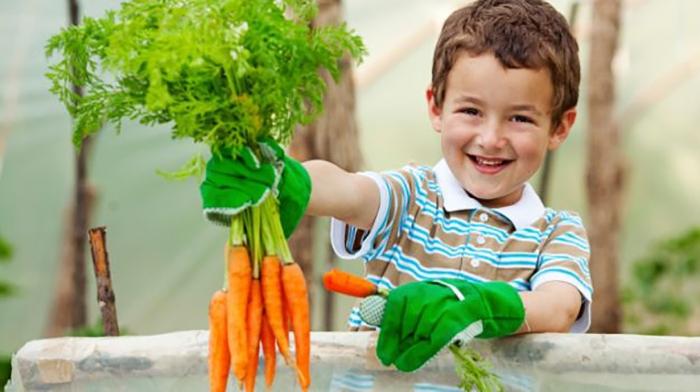 625-child-carrots_625x350_51431767973